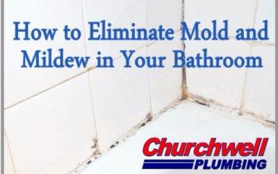 How to Combat Mold and Mildew in Your Bathroom