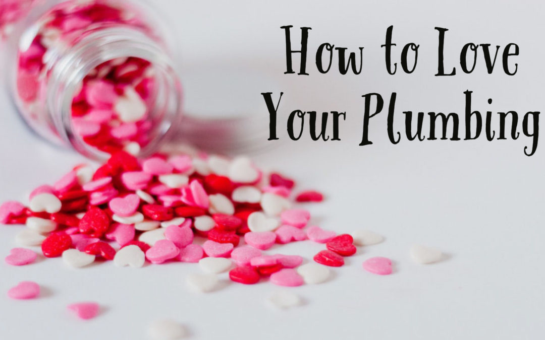 How to Love Your Plumbing